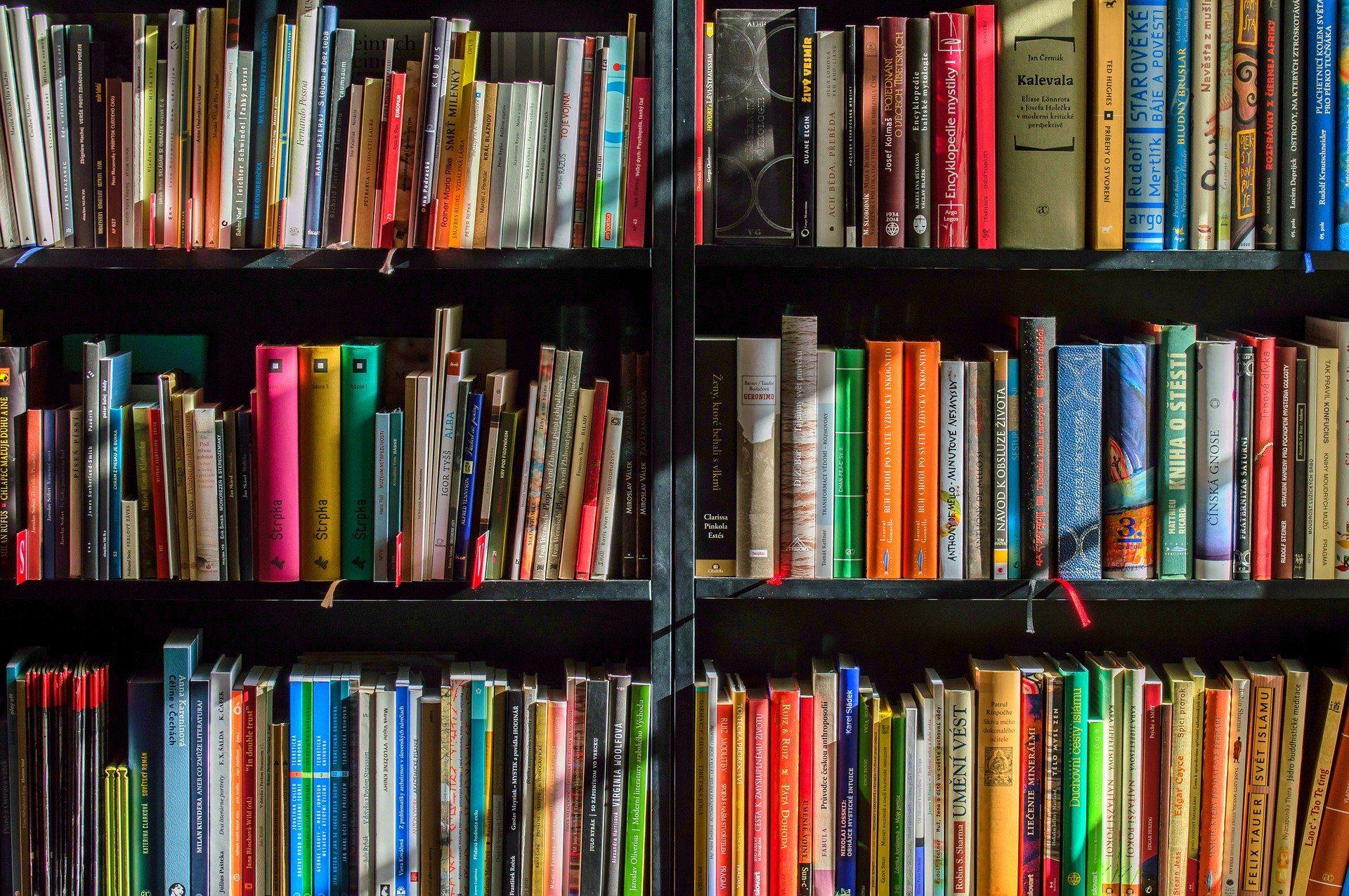 Ein Bücherregal mit vielen bunten Buchrücken.