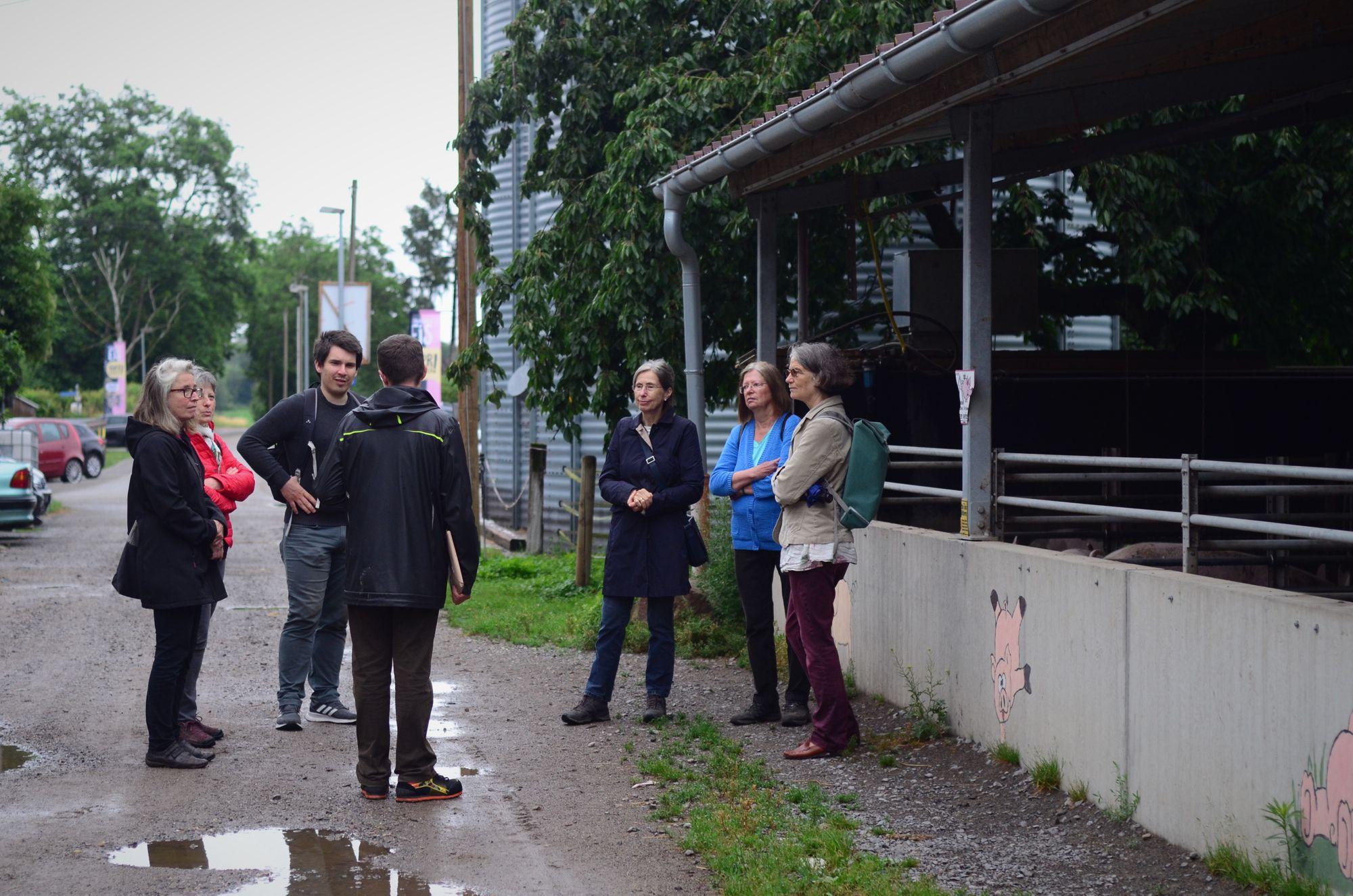 MdL Alexander Salomon mit Mitgliedern des Karlsruher Gemeinderats bei der Besichtigung der Schweineställe.